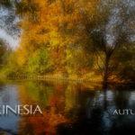 Akinesia - «Autumn»
