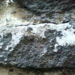 Cezary Gapik - «The Limestone EP»