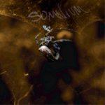 Somnium - «Arachnophobia EP»