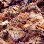 Berthelot - «Dans les pliures des rêves synclinaux»